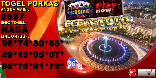 porkas_copy_copy