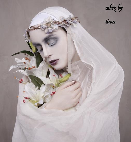 lady_baroque_tiram_145