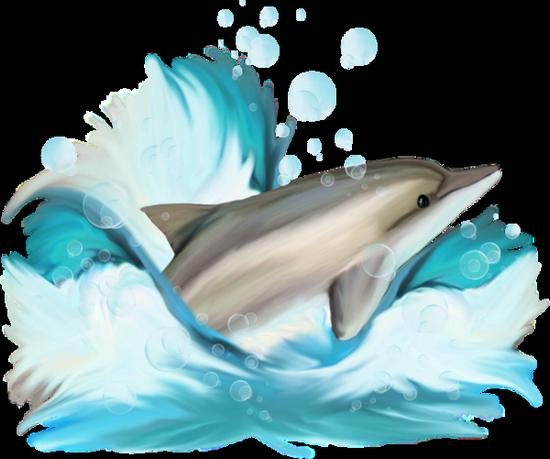 tubes_dauphins_tiram_74