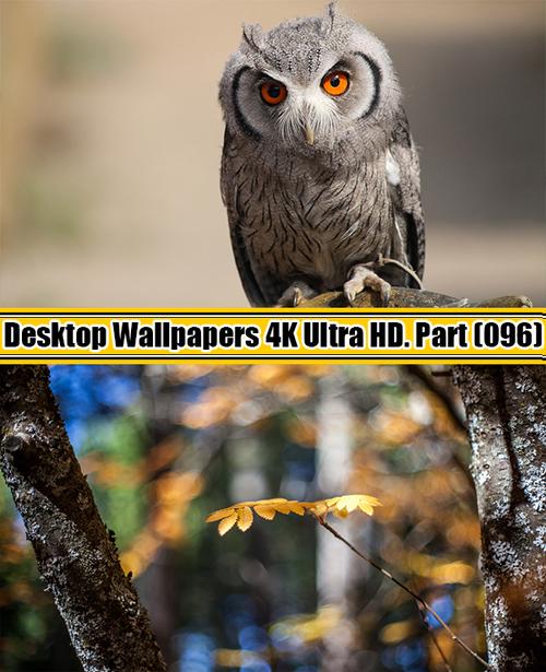 Deskop Wallpapers 4K Ultra HD. Part 96