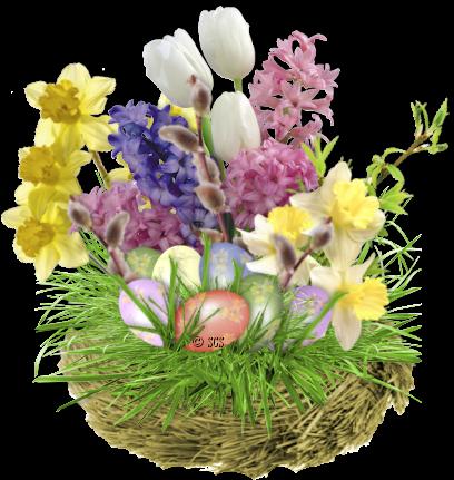 fleurs_paques_tiram_112