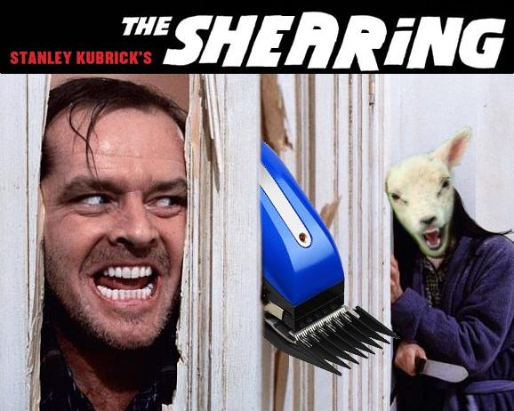 the-shearing