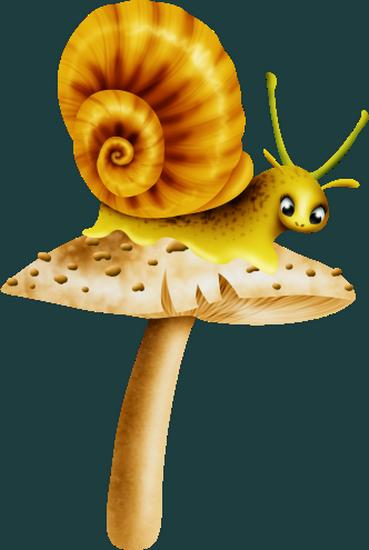 tubes_escargots_tiram_211