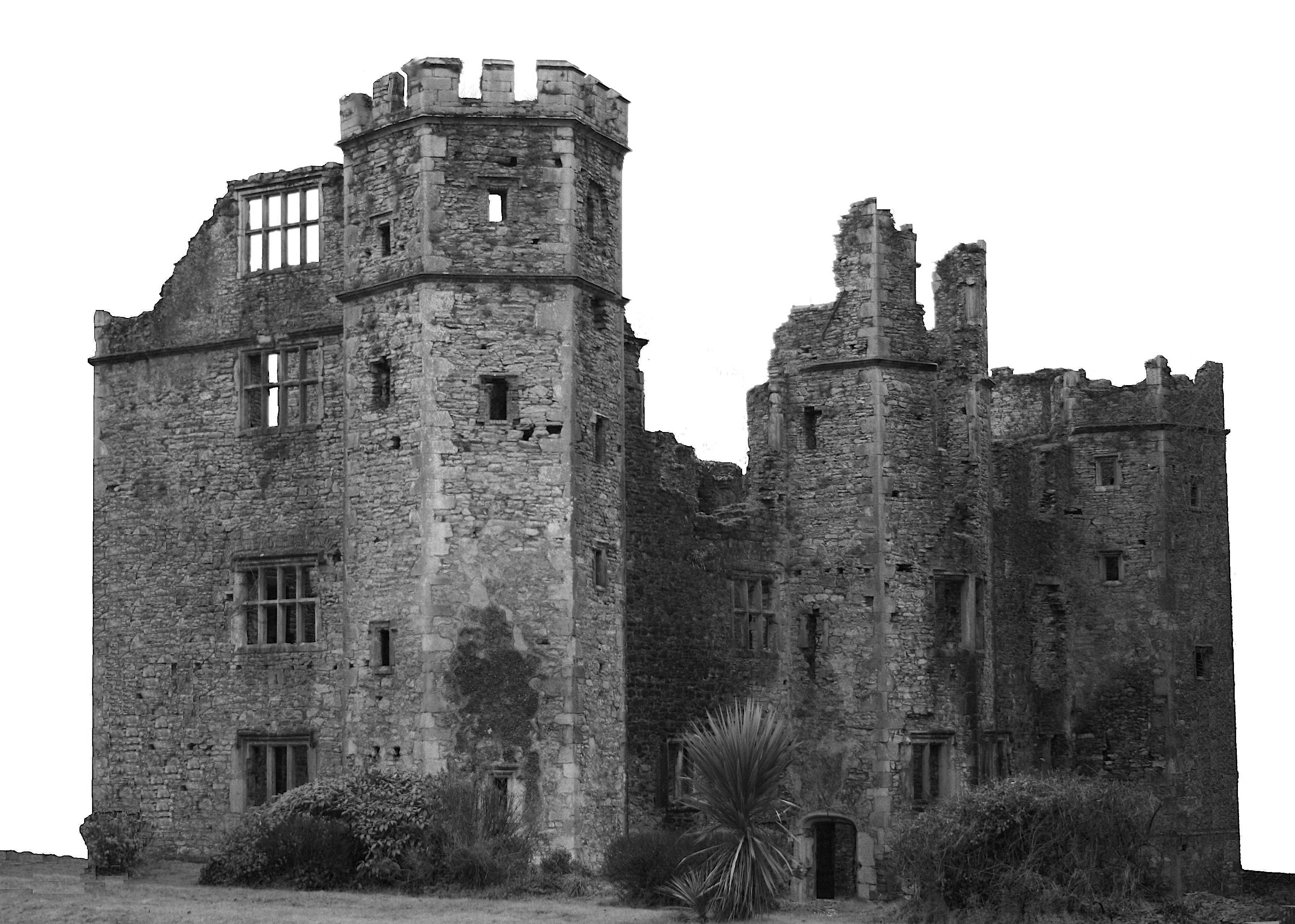 Fig. 1: The façade of Mallow Castle. The entrance doorway is in the central turret but was not visible from the front of the building.