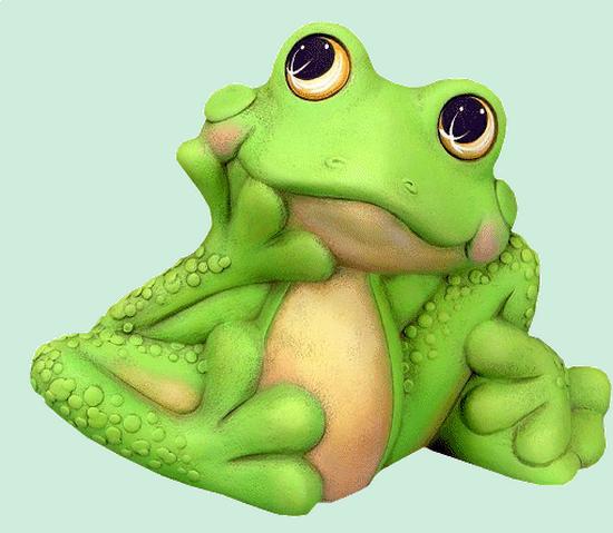 grenouille_tiram_54