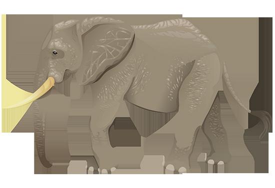 tubes_elephants_tiram_79