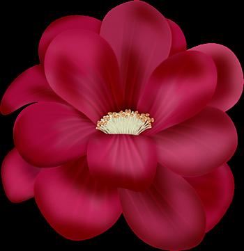tubes_fleurs_saint_valentin_tiram_111