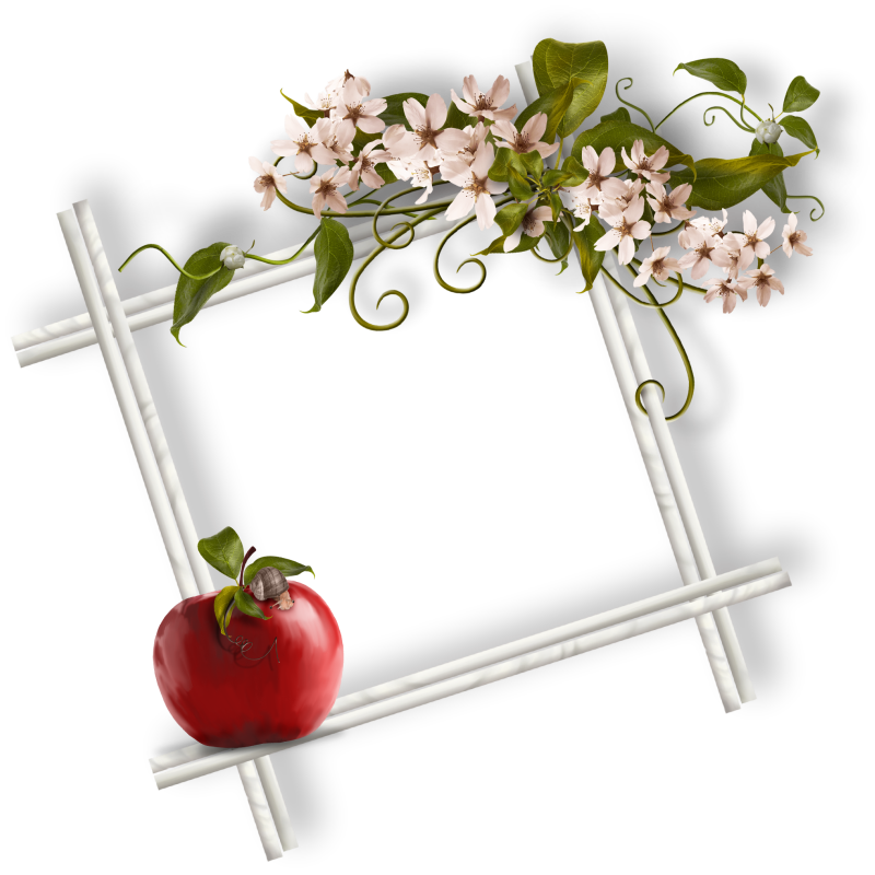 tubes_fleurs_saint_valentin_tiram_215