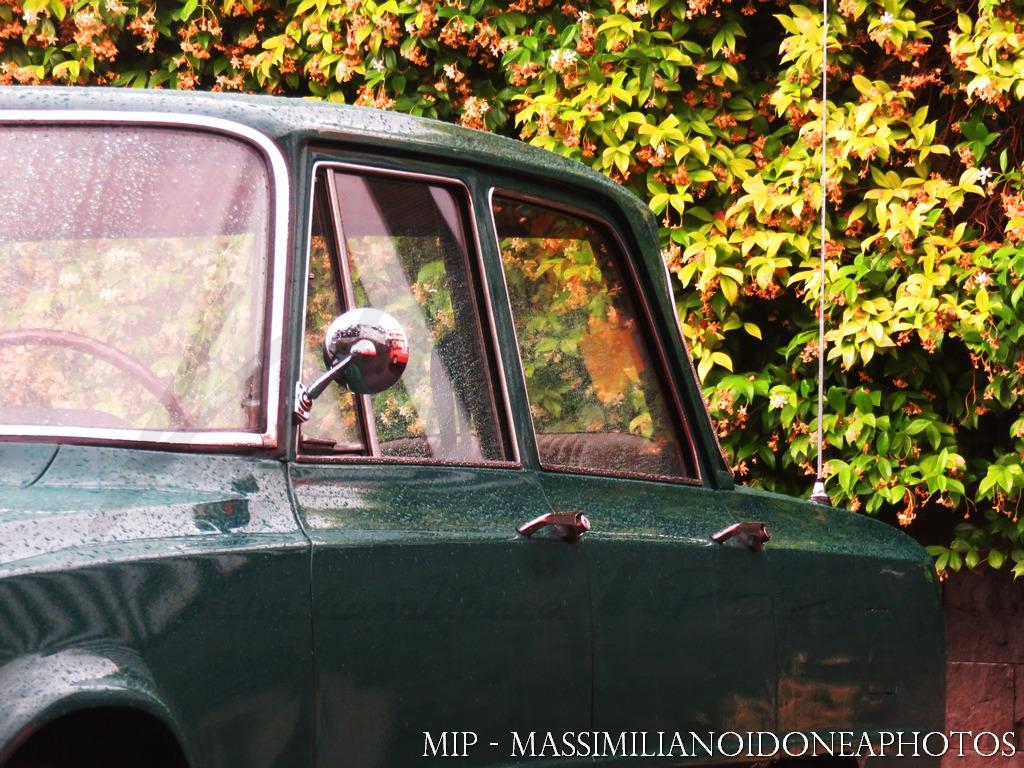 Raduno Auto d'epoca Ragalna (CT) Alfa_Romeo_Giulia_Super_1_3_72_SR098430_6