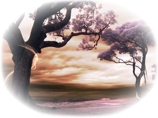 paysage_tiram_560