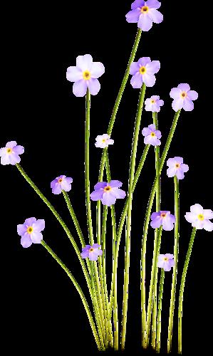 tubes_fleurs_tiram_558