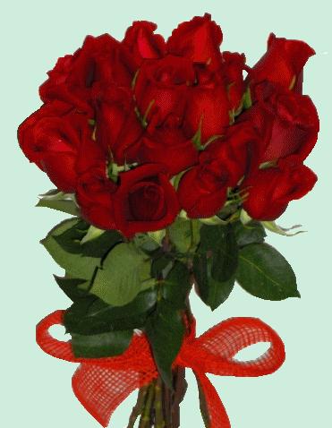 tubes_fleurs_saint_valentin_tiram_159