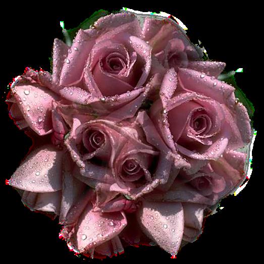 tubes_fleurs_tiram_673
