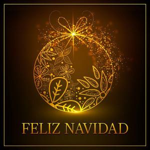 Compilations incluant des chansons de Libera Feliz_Navidad_300