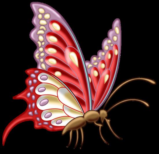 tubes_papillon_tiram_275