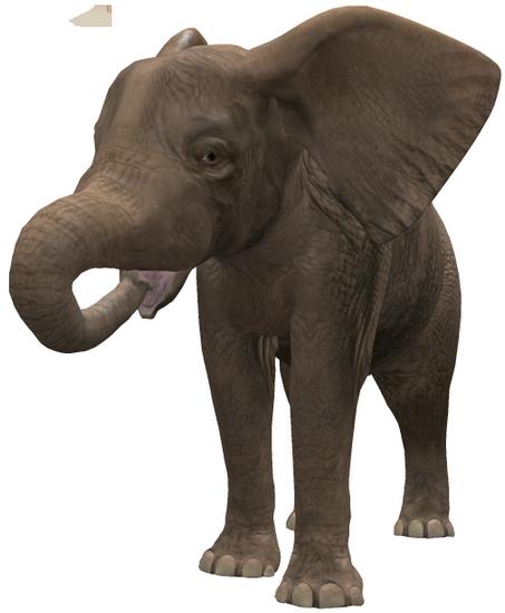 tubes_elephants_tiram_514