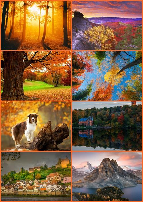 Tapety - Jesień part 5