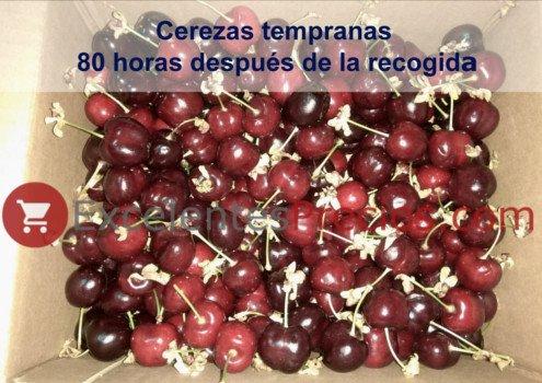 Venta de cerezas online