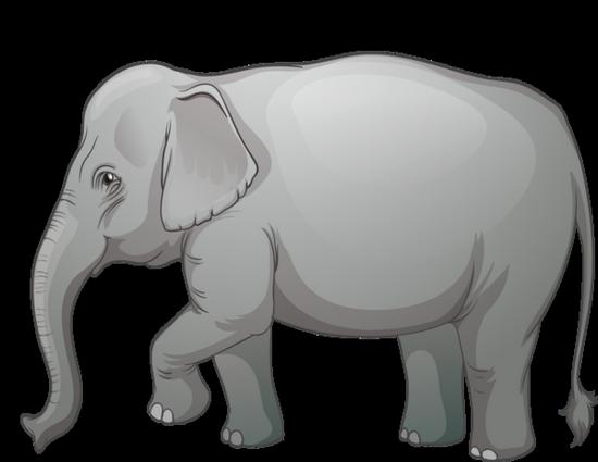 tubes_elephants_tiram_217