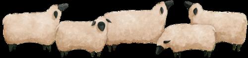 mouton_tiram_4