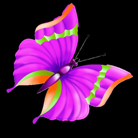 tubes_papillon_tiram_14