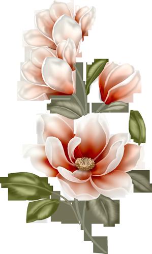 tubes_fleurs_tiram_621