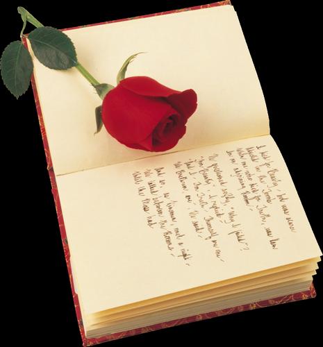 tubes_fleurs_saint_valentin_tiram_241