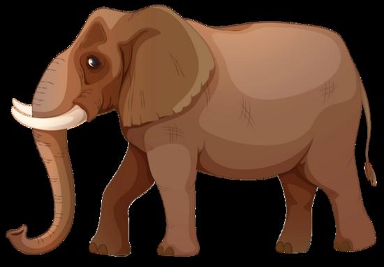 tubes_elephants_tiram_371
