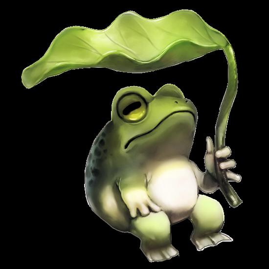 grenouille_tiram_129