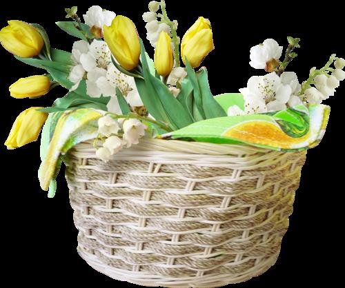 fleurs_paques_tiram_63