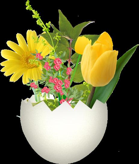 fleurs_paques_tiram_266