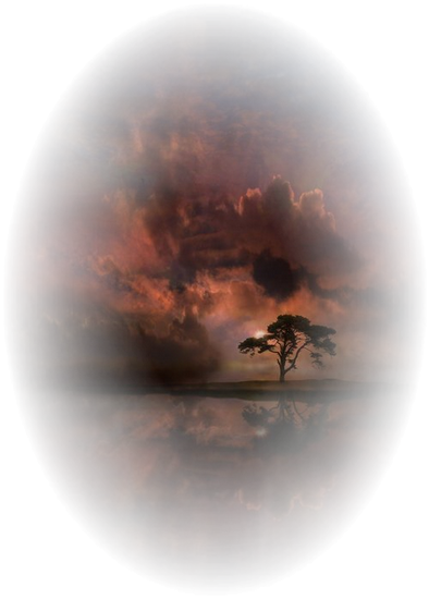 paysage_tiram_48