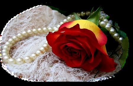 tubes_fleurs_tiram_787