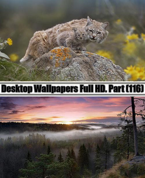 Desktop Wallpapers Full HD. Part 116