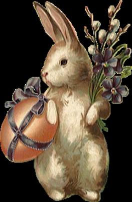 lapins_paques_tiram_272