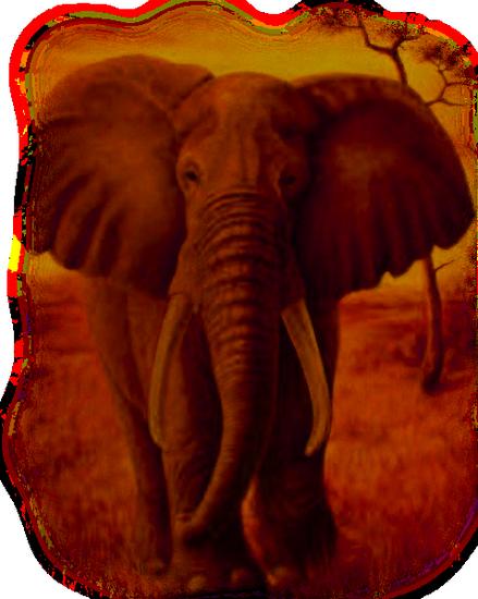 tubes_elephants_tiram_220