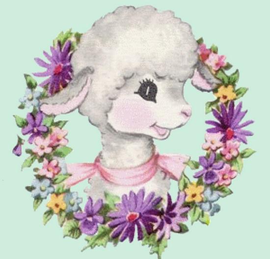 mouton_tiram_81