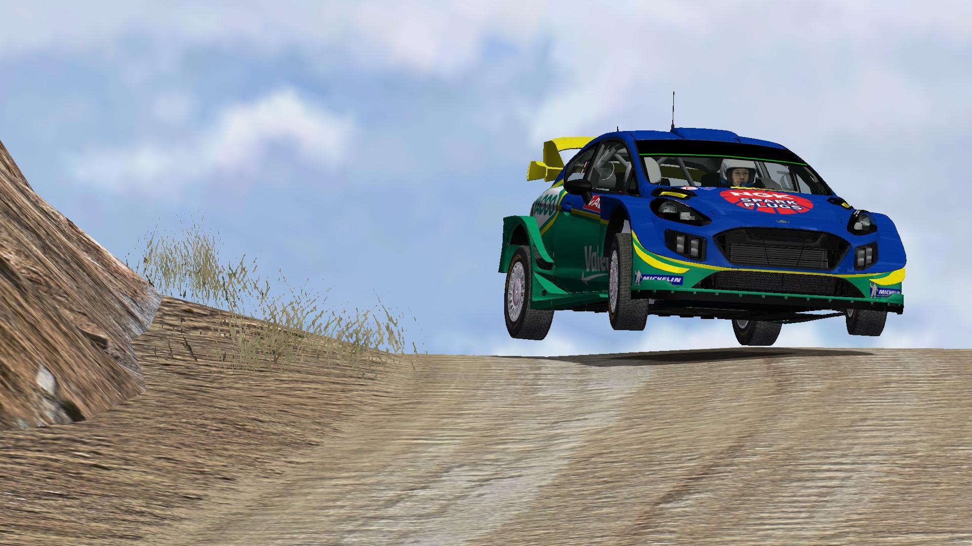 Résumés WRC Wild