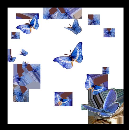 tubes_papillon_tiram_733