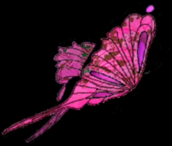 tubes_papillon_tiram_777