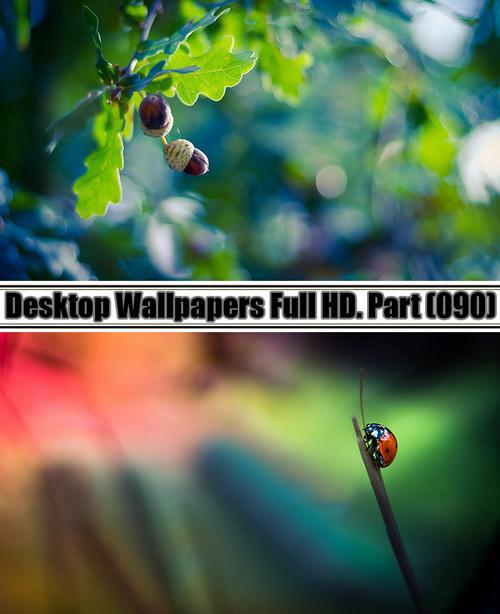Desktop Wallpapers  HD. Part 90