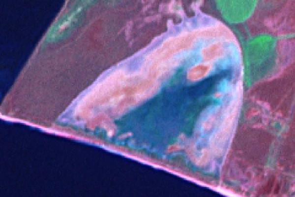 20090805