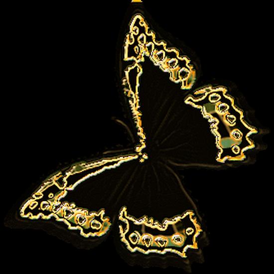 tubes_papillon_tiram_612