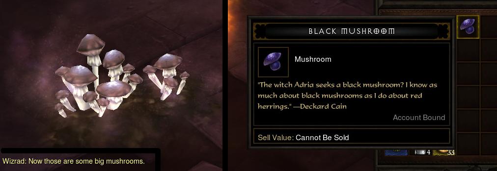 Black_mushroom.png