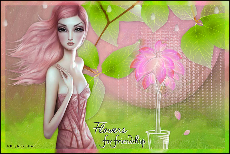 Flower For Friendship 965_flower
