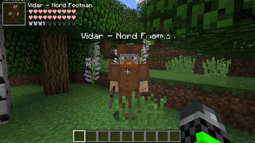 Nord Footman