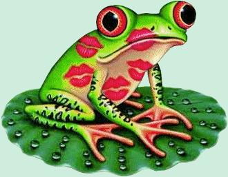 grenouille_tiram_108