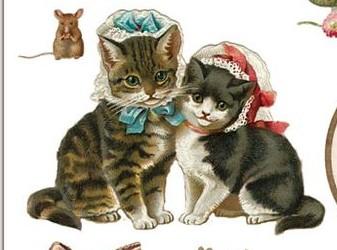 Gatos Vintage - Página 2 Sin-t-tulo-975