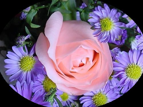 tubes_fleurs_tiram_637
