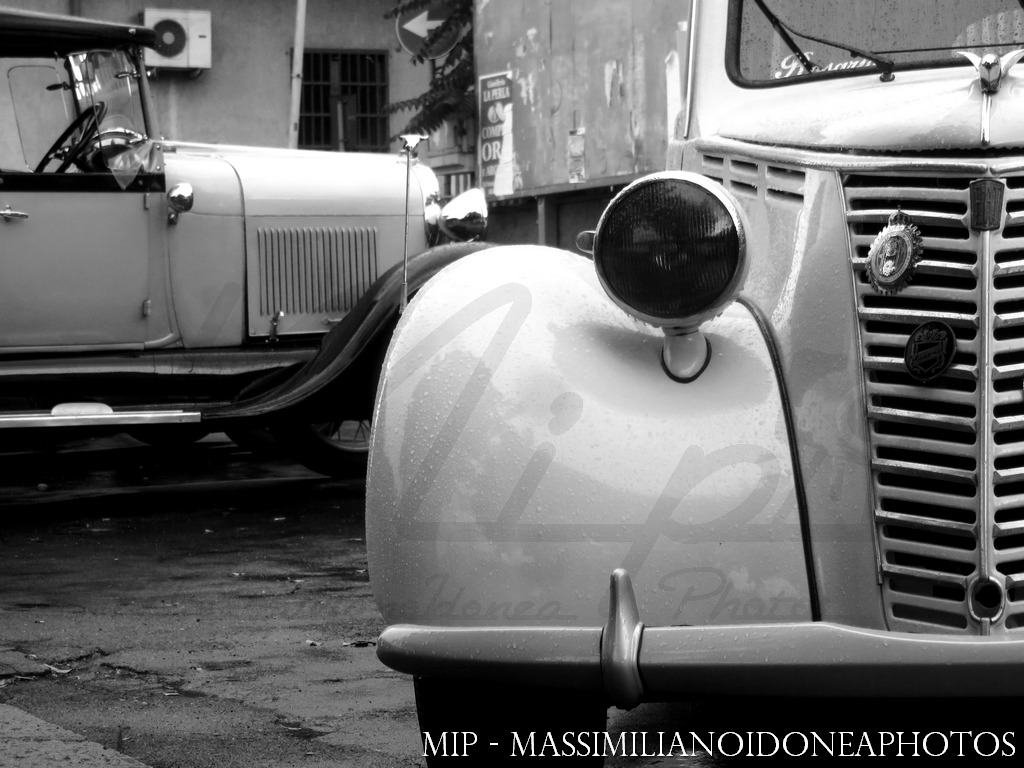 Raduno Auto d'epoca Ragalna (CT) Fiat_1100_L_MI277602_7